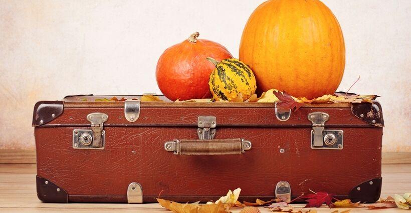 Thanksgiving Travel Tips