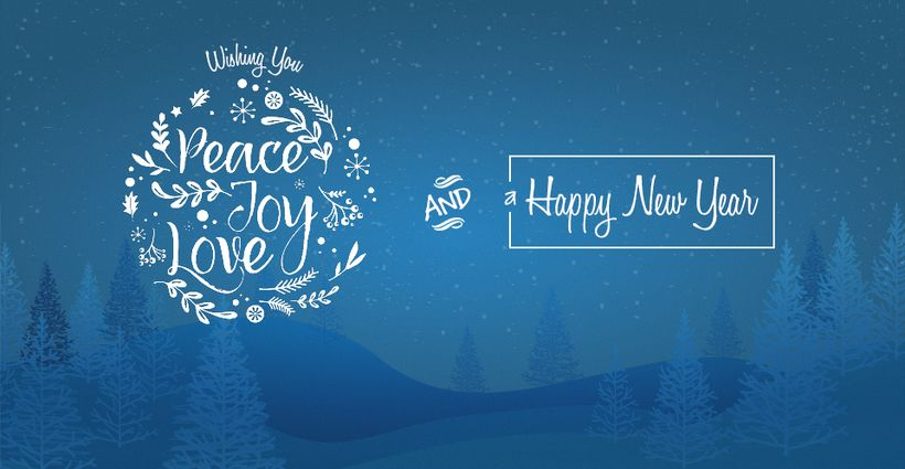 Happy Holidays From HSI!