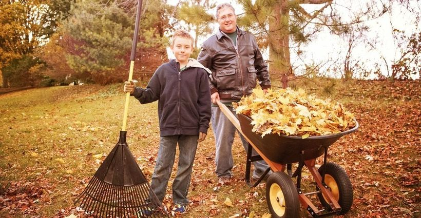 Rake Those Leaves, But Do It Safely!